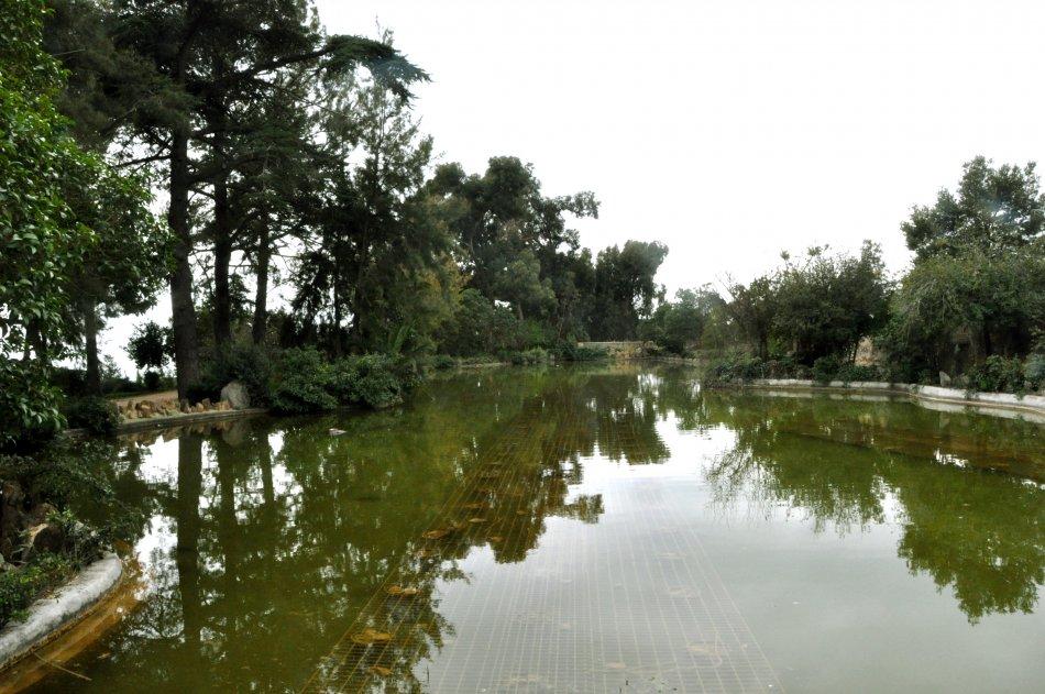 NATURÀLIA, la fira de teràpies naturals