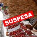 SUSPESA -  Festa de la Cirera a Torrelles de Llobregat