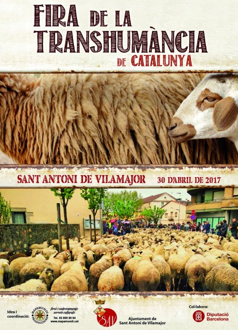 Programa de la Fira Transhumancia a Sant Antoni de Vilamajor 2017